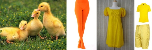 Duckling Costume Inspiration